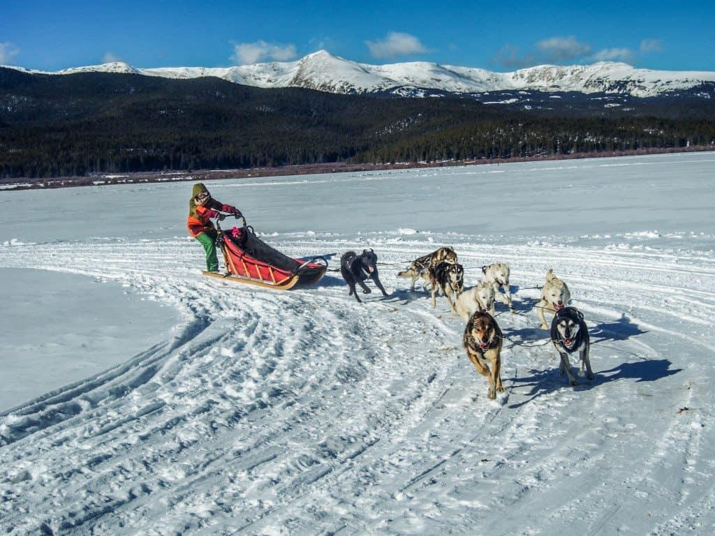 Sister dogsledding in Leadville, Colorado