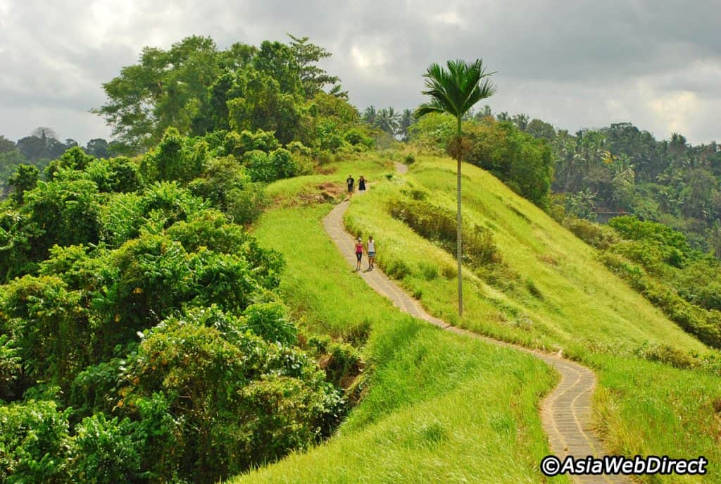 Campuhan ridge. Photo credit: www.bali-indonesia.com