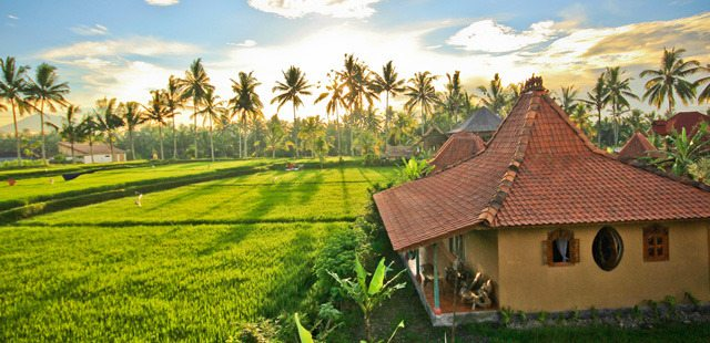 Yoga Nomads Guide To Ubud Bali Indonesia The Yoga Nomads