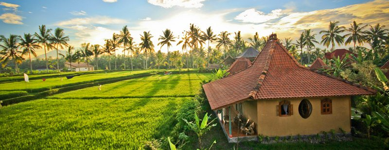 Photo credit: Dragonfly Village, Ubud