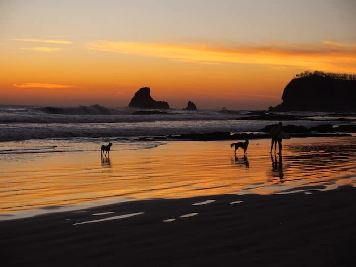 maderas beach sunset surfer