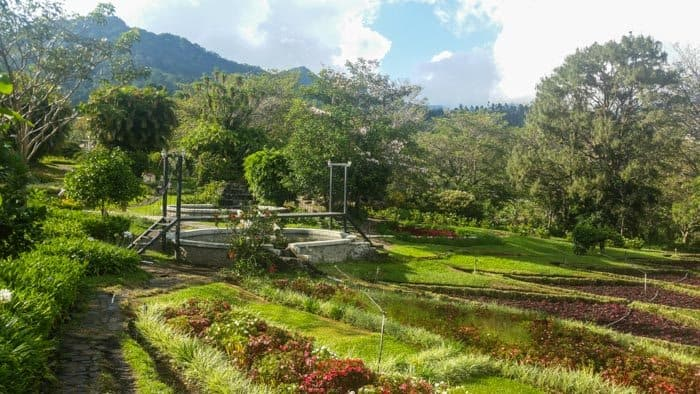 beautiful garden in Boquete