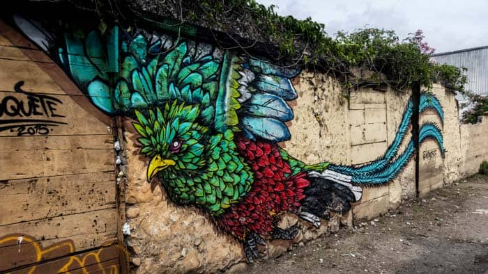 street art of the quetzal bird